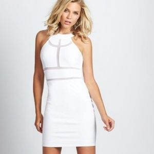 NWT! True White Guess bodycon Dress